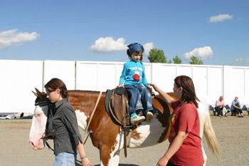 childs_horses.jpg